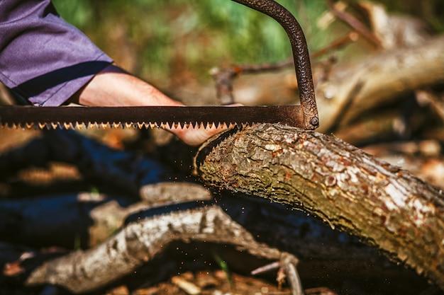 自然にキャンプファイヤーをすることに木の材木の男切削ログ。