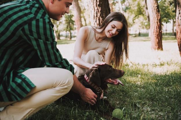 人々は夏の公園で彼らの犬と遊んでいます。
