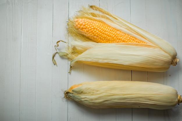 白に黄色のカラフルなトウモロコシの穂軸