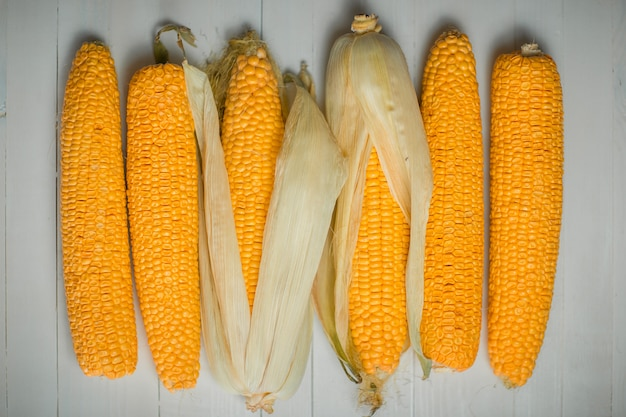 黄色のカラフルなトウモロコシの穂軸のトップビュー