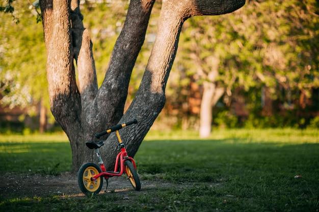開花したリンゴの木に対して自転車