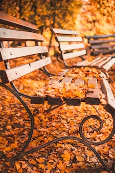 秋の公園の空のベンチには、赤と黄色の乾燥した葉が散らばっています。黄金の秋のコンセプト。熟考と熟考のためのリラックスできる場所。