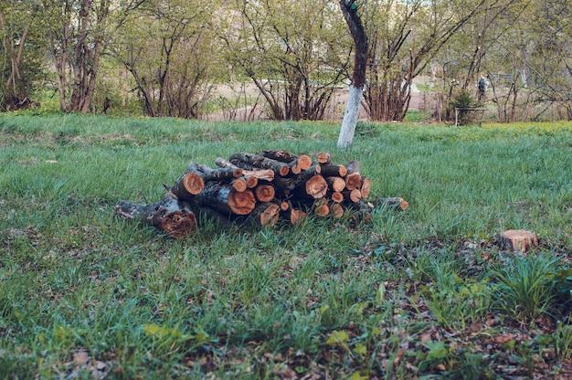 のこぎりの木の丸太は春に緑の芝生の上にあります。