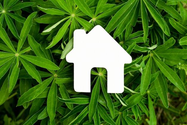 Красивый домик на фоне зеленой травы