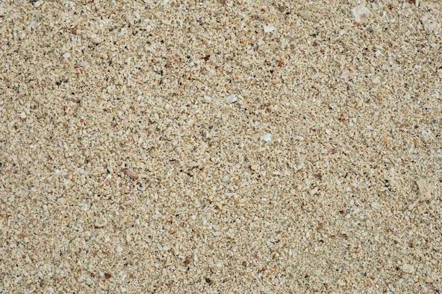砂のテクスチャ背景、小さな殻が壊れたサンゴ、ビーチで天然砂をクローズアップ。