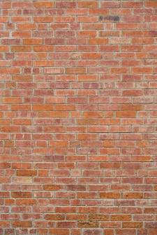 背景の赤レンガの壁