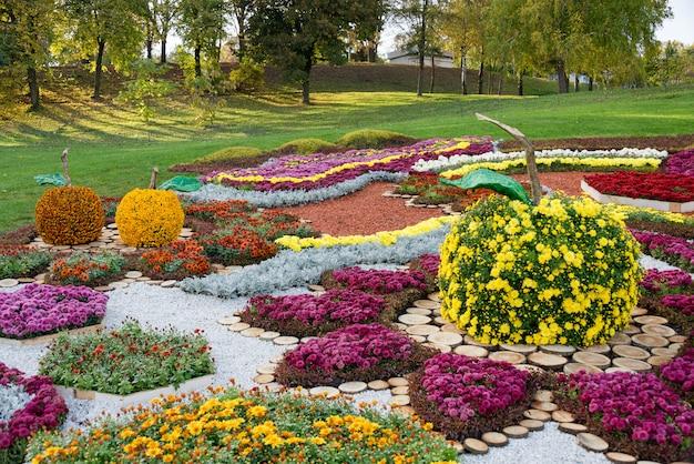 カラフルな菊の花とリンゴの形をした花壇。ウクライナ、キエフの公園。
