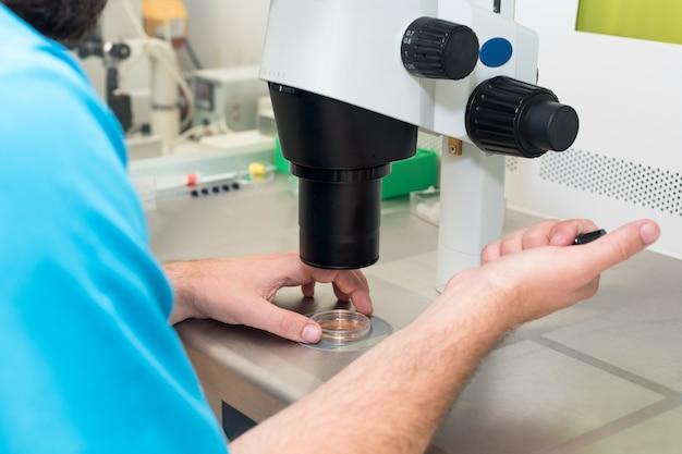 Эмбриолог или лаборант регулирует иглу, чтобы оплодотворить человеческое яйцо под микроскопом. доктор, добавив сперму в яйцо с помощью микроскопа. эко плодородие лаборатория. концепция медицины.