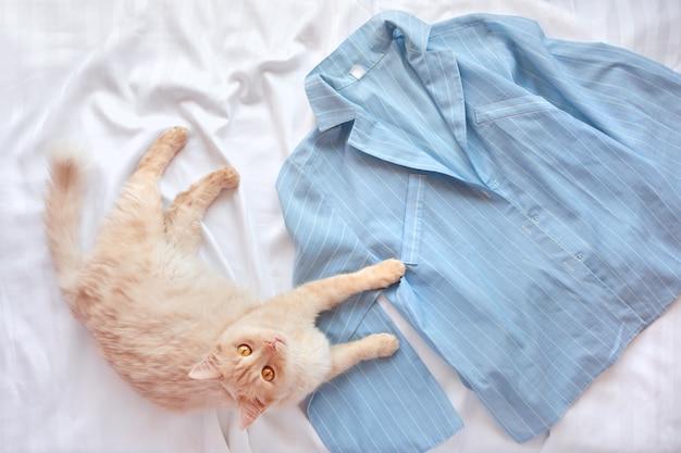 Красный пушистый кот лежа на кровати с пижамами.