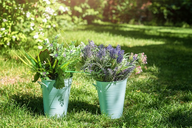 Различное расположение свежих цветков в металлических ведрах в саде. декоративные букеты для праздничного мероприятия.