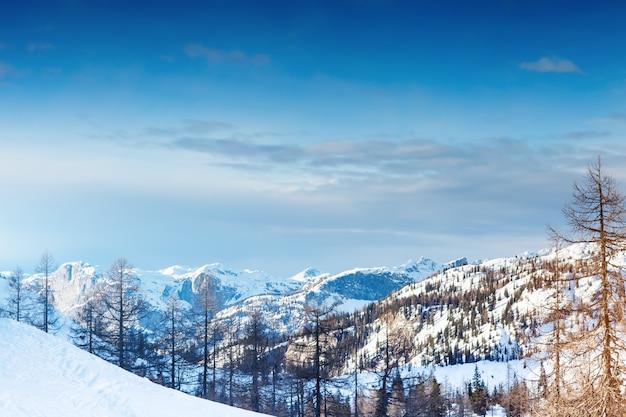 美しいアルプスの山々。冬。
