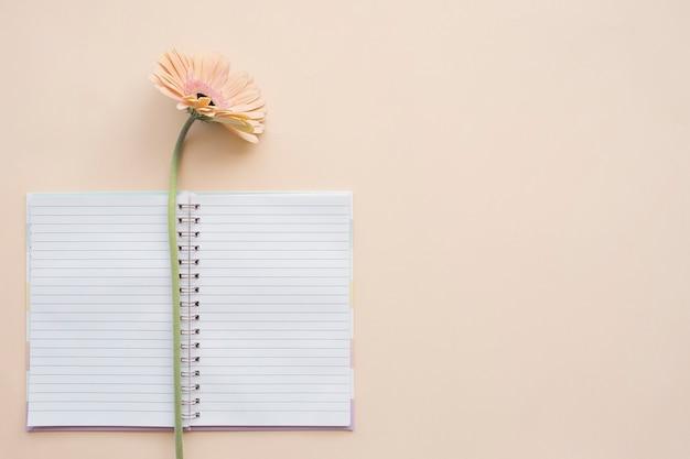 新鮮なガーベラデイジーの花の背景を持つ空白のメモ帳