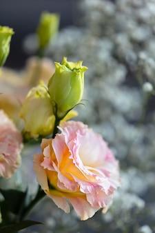 Красивые и нежные розовые цветы эустомы, лизиантус, тюльпан горечавки, эустомы. крупным планом, вертикальная композиция