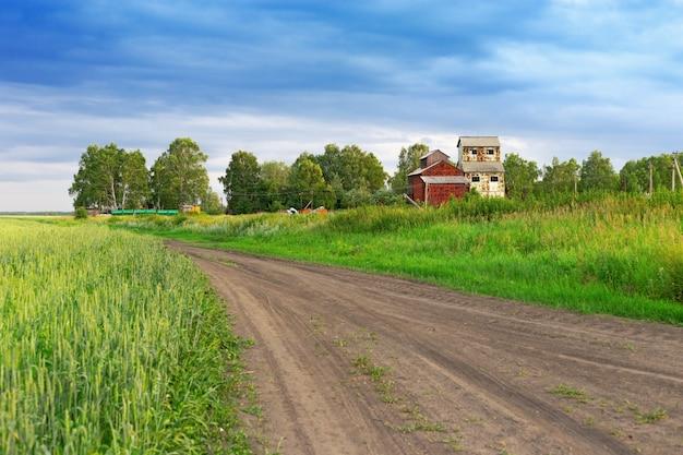 麦畑の真ん中に古い空の放棄された建物。田舎。田舎道。田園風景。