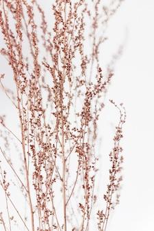 銅塗装植物。最小限のトレンディなコンセプト。秋の静物トレンド色。自然の草。フラット横たわっていた。