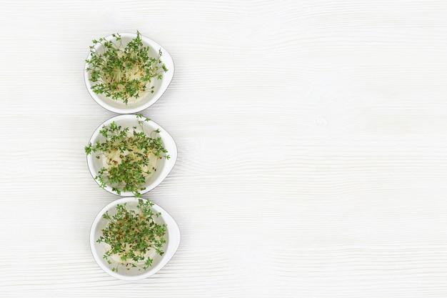 小さな丸いボウルで成長しているルッコラ、モダンなヘルシーサラダ。白い木製のテーブルに右とベジタリアンの健康食品を食べるためのマイクログリーン。上面図。