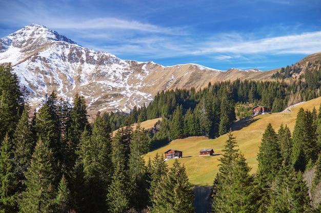 緑の松の木と青い空と雪を頂いた山の頂上のバックグラウンドでアルプスの美しい山の秋の風景