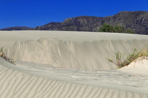 素晴らしいビーチエラフォニシ。ギリシャ、クレタ島。草と澄んだ青い空と砂丘。