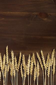 Колосья пшеницы и зерна на темно коричневый деревянный фон. осенний урожай зерновых культур.