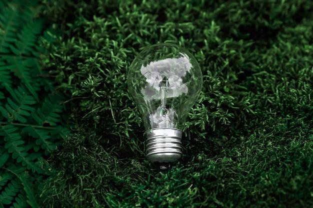 ぼやけた緑の苔のベッドに立っている電球の行とパノラマバナー