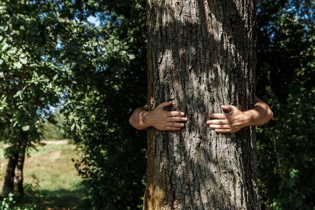 人間の手が抱擁し、木を包みます。人と自然にふれる