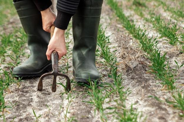 農家の手、鍬と春のフィールドのクローズアップ