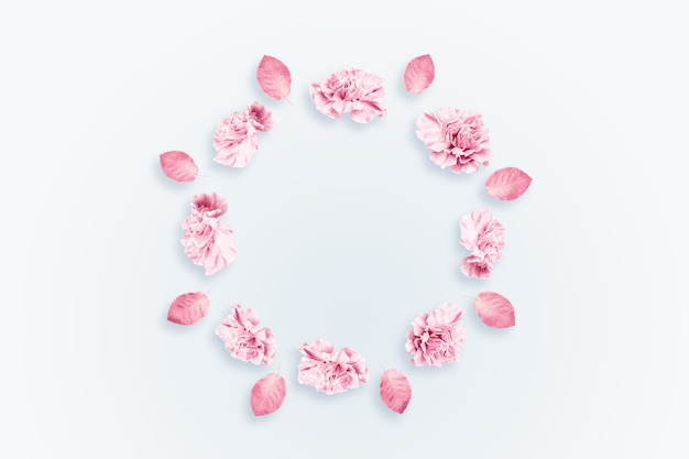 春の背景、明るい背景にピンク、赤、白のカーネーション。