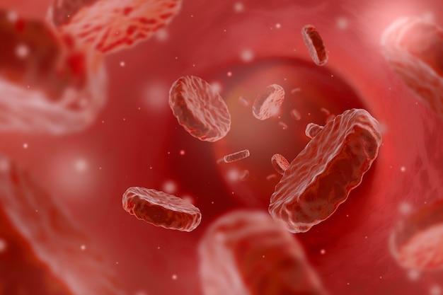 Желудок с клеткой крови человека