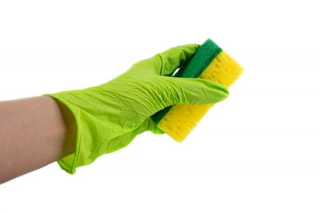 料理用スポンジで女性の手