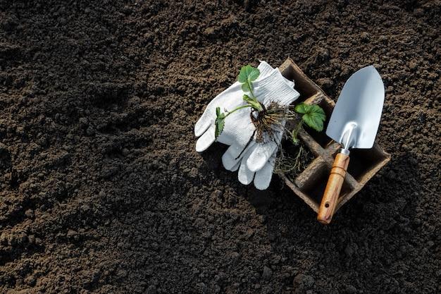 Горшки для рассады и небольшой шпатель на земле.