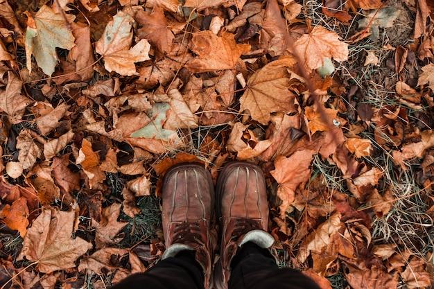 創造的な背景、靴、黄色の葉の背景にオレンジ色の靴。寒い、黄色の葉、秋の気分。コピースペース。