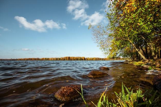 秋の川の森。黄金の秋、湖