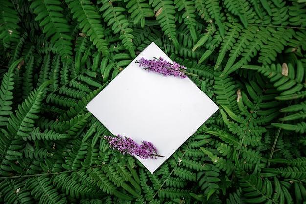 緑の花の背景に菱形紙フレーム