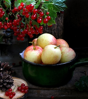 Летний сад яблок из красной смородины