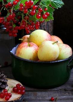 夏の庭のリンゴ赤スグリ
