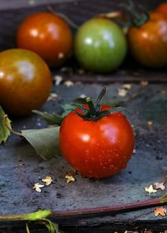 赤いトマトの庭