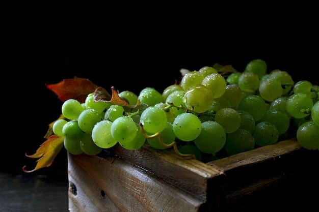 素朴な緑のブドウ