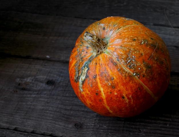 素朴な秋のカボチャ