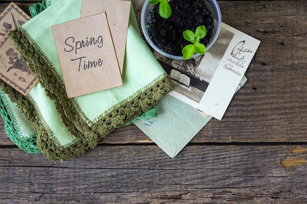 春の時間の木の苗