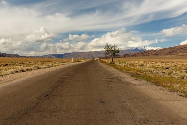 キルギスタンのイシククル地域を通過する365高速道路