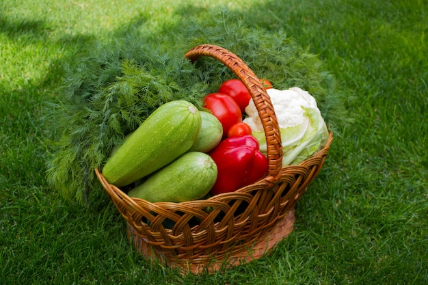 緑の芝生の上の野菜のバスケット