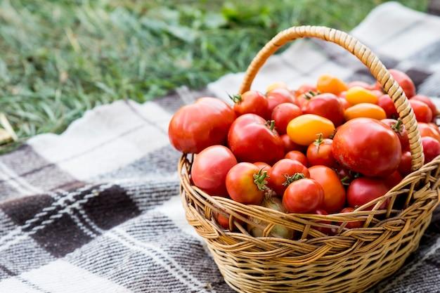 담요에 토마토와 바구니입니다. 정원에서 신선한 유기농 식품.