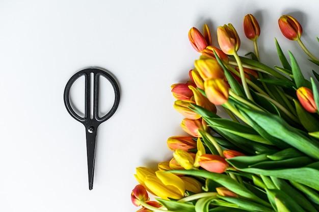 노란색, 주황색 및 빨간색 튤립의 아름다운 꽃다발, 꽃 관리의 개념