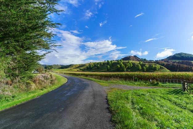 ニュージーランド北島ファンガヌイの美しい一日 Premium写真