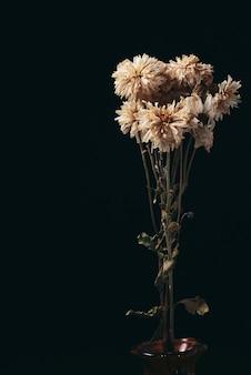 어둠 속에서 죽은 아름다운 꽃