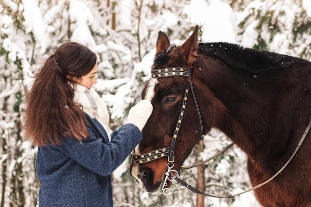 美しい少女は冬に自然の中で馬を撫でます。動物とのコミュニケーション