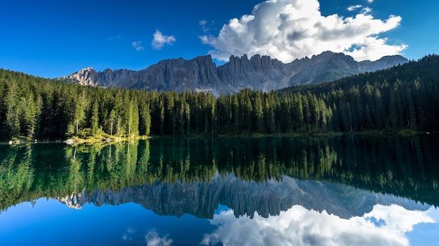 Красивое озеро в лесу