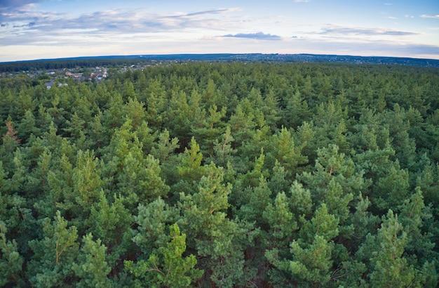 Красивая большая деревня, вокруг которой большой зеленый еловый лес.