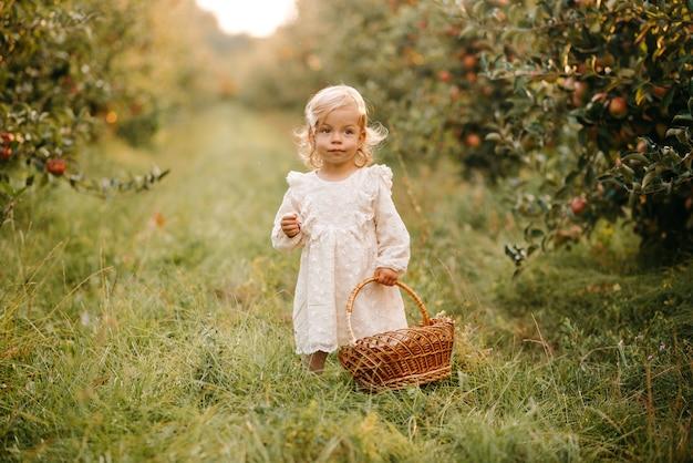 果樹園の美しい少女
