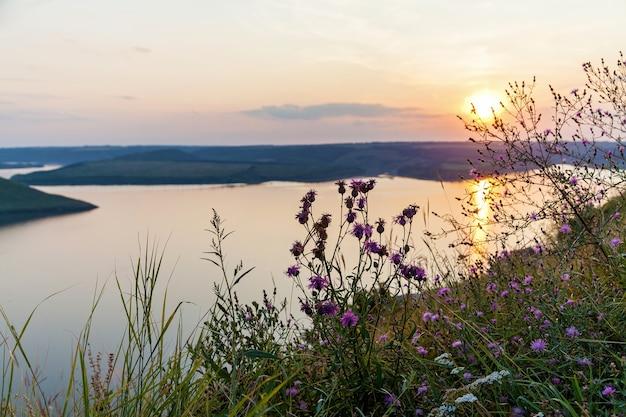 여름날 큰 호수 위의 분홍색 일몰의 아름다운 탁 트인 전망. 이 자연 사진 앞에는 분홍색 야생화가 있습니다.